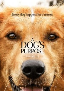 a-dogs-purpose